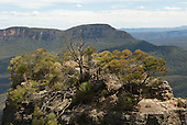Blue Mountains, Australia. Mountaintop with vegetation, Katoomba.