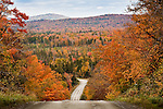 Fall foliage in Piscataquis County, ME