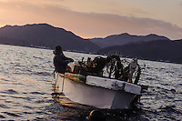 Wakame boat, harvesting wakame at dawn, Awata fishing port, Naruto, Tokushima Prefecture, Japan, February 4, 2012.