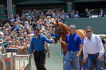 """ARCADIA, CA  JUNE 23: Justify and exercise rider Humberto Gomez, groom Eduardo Luna and asst. trainer Jimmy Barnes enter the track in front of the fans on """"Justify Day"""" on June 23, 2018 at Santa Anita Park in Arcadia, CA.  (Photo by Casey Phillips/Eclipse Sportswire/Getty Images)"""