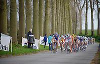 peloton descending into Nokere<br /> <br /> Nokere Koerse 2014