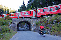 Day 2 - Abula Pass - 5,500 feet climbing. The National Bike Network is intelligently integrated with the Swiss train system.  For 10 USD (need to confirm 2013 price), in addition to passenger fare, a cyclist can put their bike on any train in the system.  In 2011, the author used both trains and his bicycle to cover the Tour de Suisse cycling race carbon free--ie. without using a car or motorcycle to follow the peloton.  Abula Pass