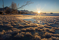 Winter landscape of Hoarfrost on trees and bushes and the ice of the Matanuska River on a sunny day in the Matanuska Valley near Palmer, Alaska. Pioneer Peak, Twin Peaks and the Chugach Mountains  Southcentral Alaska.  Sun shines<br /> <br /> Photo by Jeff Schultz/SchultzPhoto.com  (C) 2019  ALL RIGHTS RESERVED