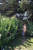 USA, California, Big Sur, Esalen, a woman walks along a fenceline by the Point Houses, the Esalen Institute