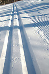 Fresh tracks, .Winter, Cross Country Trails.Mount Washington Hotel.Bretton Woods, New Hampshire..... .