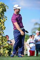 David Lingmerth (SWE) watches his tee shot on 13 during round 1 of the Honda Classic, PGA National, Palm Beach Gardens, West Palm Beach, Florida, USA. 2/23/2017.<br /> Picture: Golffile | Ken Murray<br /> <br /> <br /> All photo usage must carry mandatory copyright credit (&copy; Golffile | Ken Murray)