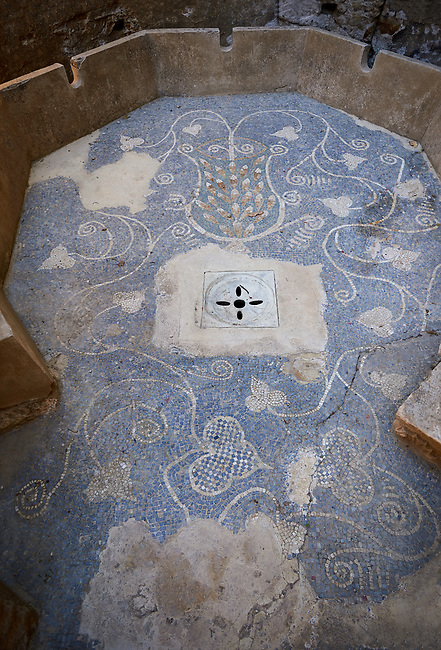 Close up picture of the Roman mosaics of The floor of the Polygonal Lavatory at the Villa Romana del Casale, first quarter of the 4th century AD. Sicily, Italy. A UNESCO World Heritage Site.