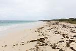 Cap Juluca 'Wild' Beach