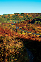 The Duke's Pass above Aberfoyle, Loch Lomond and The Trossachs National Park