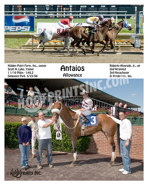 Antaios winning at Delaware Park on 5/23/06