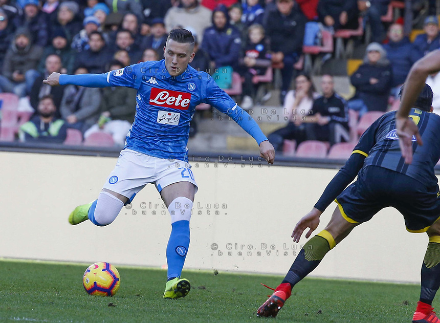 during the  italian serie a soccer match,  SSC Napoli - Frosinone       at  the San  Paolo   stadium in Naples  Italy , December 08, 2018