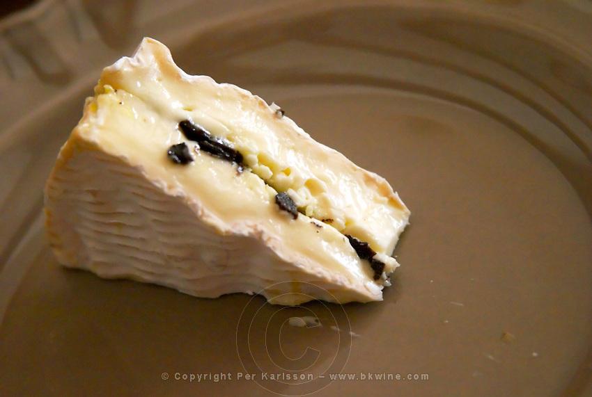 A camembert cheese stuffed with truffles at La Truffe de Ventoux truffle farm, Vaucluse, Rhone, Provence, France