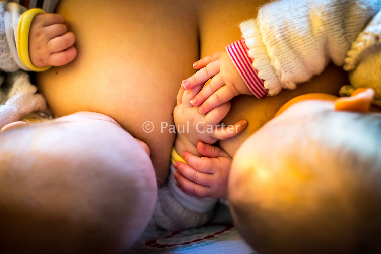 Close-up of 5 month old twins brestfeeding at the same time. The babies are playing with each others hands.<br /> <br /> Image from the &quot;We Do It In Public&quot; documentary photography project collection: <br />  www.breastfeedinginpublic.co.uk<br /> <br /> Hampshire, England, UK<br /> 11/02/2013