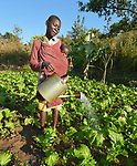 Carrying her baby, Mary Nkhata waters a community garden in Kaluhoro, Malawi. With support from the Ekwendeni Hospital AIDS Program, she and other villagers participate in a Building Sustainable Livelihoods program, working together to earn and save money, raise more nutritious food, and receive vocational training.