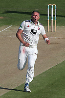 Mitchell Claydon of Kent celebrates taking the wicket of Yorkshire's Adam Lyth during Kent CCC vs Yorkshire CCC, Specsavers County Championship Division 1 Cricket at the St Lawrence Ground on 15th May 2019