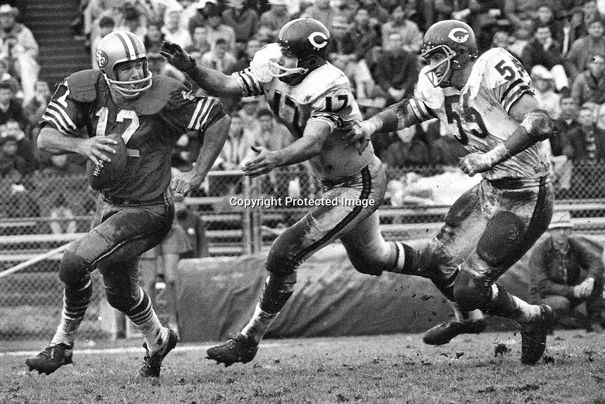 San Francisco 49er quarterback John Brodie is chased by two Chicago Bears <br />(1965 photo by Ron Riesterer)