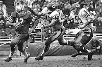 San Francisco 49er quarterback John Brodie is chased by two Chicago Bears <br />