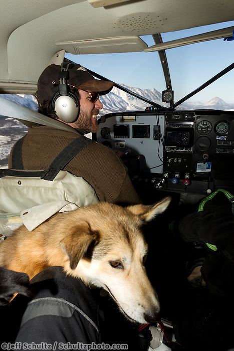 Volunteer pilot Wes Erb is all smiles at the controls of his Cessna 185 as he flies 5 dropped dogs, including the Bob Bundtzen dog in the foreground out of Rohn during the 2011 Iditarod.