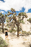 Joshua Tree National Park, California.