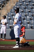 West Virginia Black Bears Jared Triolo (23) at bat during a NY-Penn League game against the Batavia Muckdogs on August 29, 2019 at Monongalia County Ballpark in Morgantown, New York.  West Virginia defeated Batavia 5-4 in ten innings.  (Mike Janes/Four Seam Images)