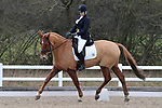 10/03/2018 - Class 4 - British Dressage - Brook Farm training centre