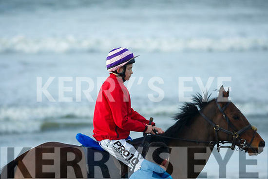Out on a gallop before the start of the Ballyheigue Races on Wednesday last.