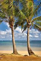 Two palm trees at Anini Beach. Kauai, Hawaii.