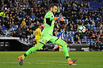 League Santander 2017-2018 - Game: 24.<br /> RCD Espanyol vs Villarreal CF: 1-1.<br /> Diego Lopez.
