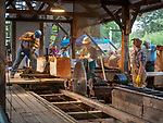 Steam-powered sawmill demonstration cutting logs into lumber, Friday at the 80th Amador County Fair, Plymouth, Calif.<br /> .<br /> .<br /> .<br /> #AmadorCountyFair, #1SmallCountyFair, #PlymouthCalifornia, #TourAmador, #VisitAmador