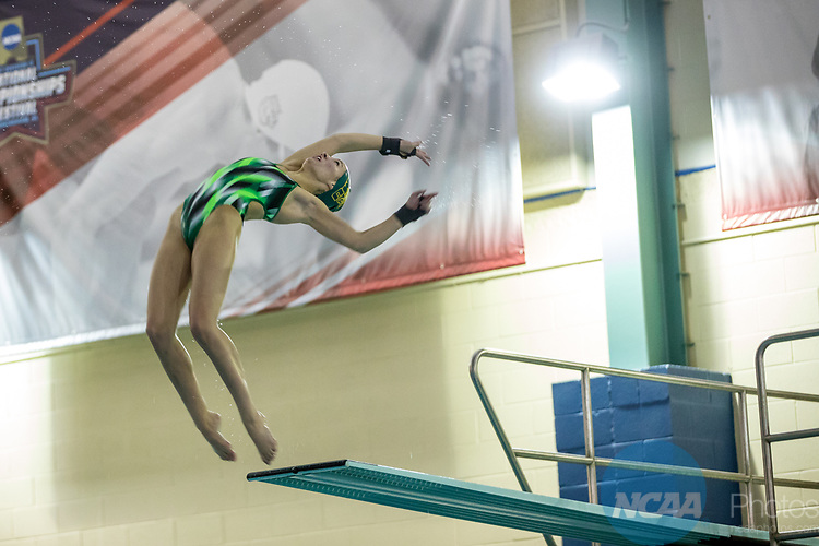 BIRMINGHAM, AL - MARCH 11: Angela Probstfeld of NMU jumps off the board during the Division II Men's and Women's Swimming & Diving Championship held at the Birmingham CrossPlex on March 11, 2017 in Birmingham, Alabama. Probstfeld came in 3rd with a score of 476.75. (Photo by Matt Marriott/NCAA Photos via Getty Images)