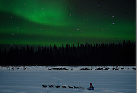 Northern Lights (Aurora borealis) illluminate the sky as Iditarod musher Stephen Schnuelle and dog team traverse the Kuskokwim River near McGrath, Alaska.