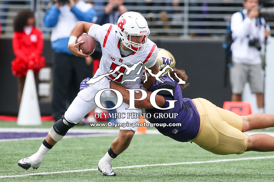 03 September 2016:  Rutgers quarterback #5 Chris Laviano gets sacked for a loss by Washington's #11 Elijah Qualls.  Washington defeated Rutgers 48-13 at the University of Washington in Seattle, WA.
