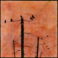 Mixed media encaustic photo transfer in orange of birds on telephone poles in orange sunset sky