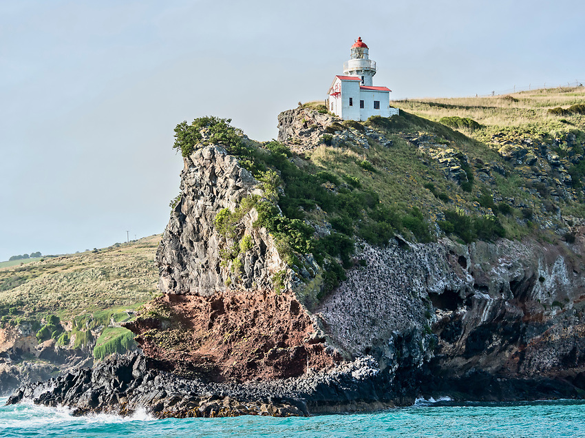 Taiaroa Head, bearing the Taiaroa Head Lighthouse, forms the end of the Otago Peninsula, which extends northeast into the Pacific Ocean from Dunedin, on the south island of New Zealand