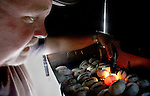 Allen Register shines a light through each of the alligator eggs, known as candling, to confirm if they are fertile or not after the group harvested 562 alligator eggs from Lake Miccosukee July 19, 2007.  The commercial alligator farmers pay the state of Florida five dollars per fertile egg the collect to hatch and raise for the meat and skins.