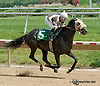 Smooth Approach winning at Delaware Park on 7/18/13