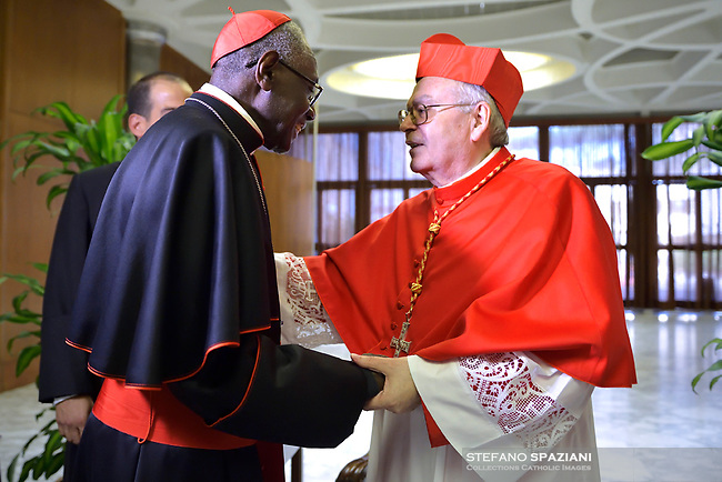 Cardinal Aquilino Bocos Merino,  Cardinal Robert Sarah,Pope Francis leads a consistory for the creation of five new cardinals  at St Peter's basilica in Vatican on  June 28, 2018