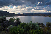 Hearty green brush on the shoreline of Blue Mesa Reservoir under ominous summer clouds in western Colorado.