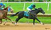 Willow Bob winning at Delaware Park on 6/7/17
