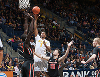 CAL Basketball vs Oregon State, March 1, 2015