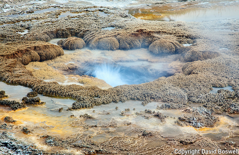 An unnamed geyser in Black Sands Basin, Yellowstone National Park