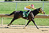 One Eyed Candyride winning at Delaware Park on 9/27/14