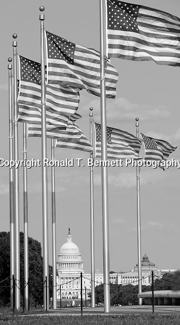 US Capital with flags Washington Monument Washington, D.C.,  US Capital, United States Capital with flags, Washington DC, District, DC, capital, Potomac River, Washington Metropolitain, metropolitan area, federal district, federal government of USA, US Congress, White House, National Mall, Politics in the United States, Presidential, Federal Republic, united States Congress, powers, Judicial Power, House of Representatives, US Senate, Consitiution, federal law, Democratic Party, Republican party, two party system,