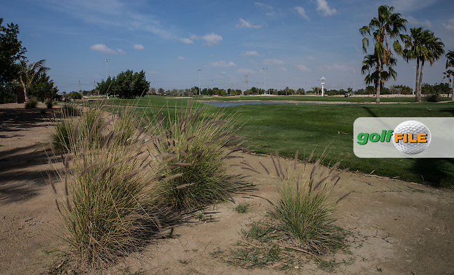 8th tee, The Track at The Meydan Golf Club, Dubai, United Arab Emirates.  31/01/2016. Picture: Golffile | David Lloyd<br /> <br /> All photos usage must carry mandatory copyright credit (&copy; Golffile | David Lloyd)