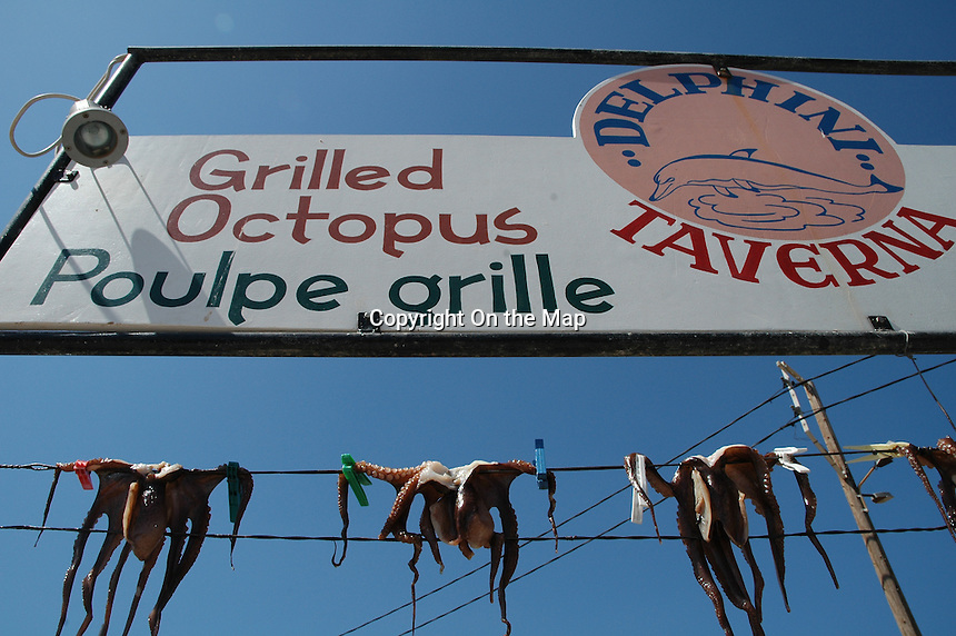 Greek Octupus Hanger
