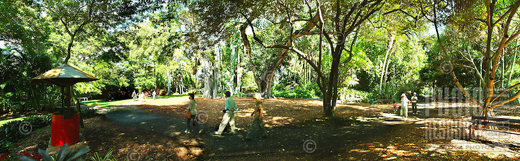 People stroll through the lush trees and grounds at Foster Botanical Gardens in Honolulu.