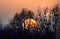 Nederland Zaandam 2020. Ondergaande zon in Zaandam.  Foto Berlinda van Dam / Hollandse Hoogte