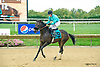 Lefty Got It Right with Ms. Sarah Shaffer aboard winning The Fegentri Amateur Riders Club of America Race at Delaware Park on 10/3/15