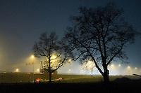 Nederland, Driebergen, 11 dec 2013<br /> Mooie bomen bij oprit van snelweg.<br /> Foto: Michiel Wijnbergh