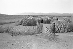 A traditional Turkana  village,  Nr Kakuma.  <br /> A thorn Kraall keeps their livestock close to the huts at night to protect against hyenas and marauding neighbouring tribes.